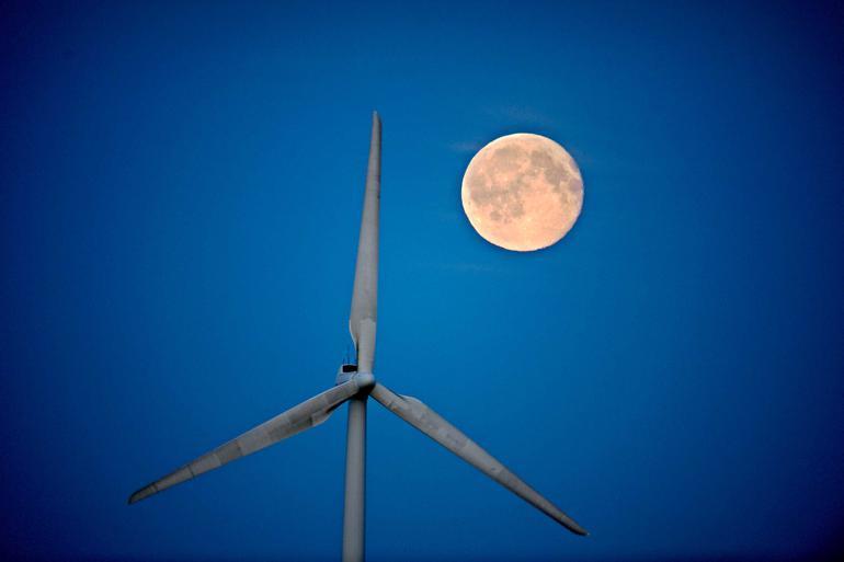 Særlig rådgivningsopgaver kræver, at tilbudsgiver leverer en del af løsningen i tilbuddet, hvilket svarer til, at man skulle lave fundamentet for at kunne vinde et udbud om at lave en vindmølle, indvender DI. Foto: Claus Bonnerup / Polfoto
