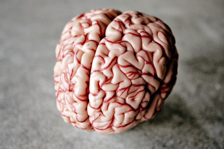 Efter indførelsen af neuropædagogik som metode har Bo- og Naboskab i Vordingborg Kommune nedbragt antallet af magtanvendelser fra 350 til 0.