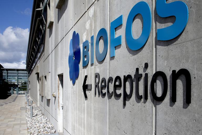 Selv mener Biofos-direktøren, at oplysningerne om ansættelsen af fyret ARC-chef ingen relevans har for selskabets bestyrelse.