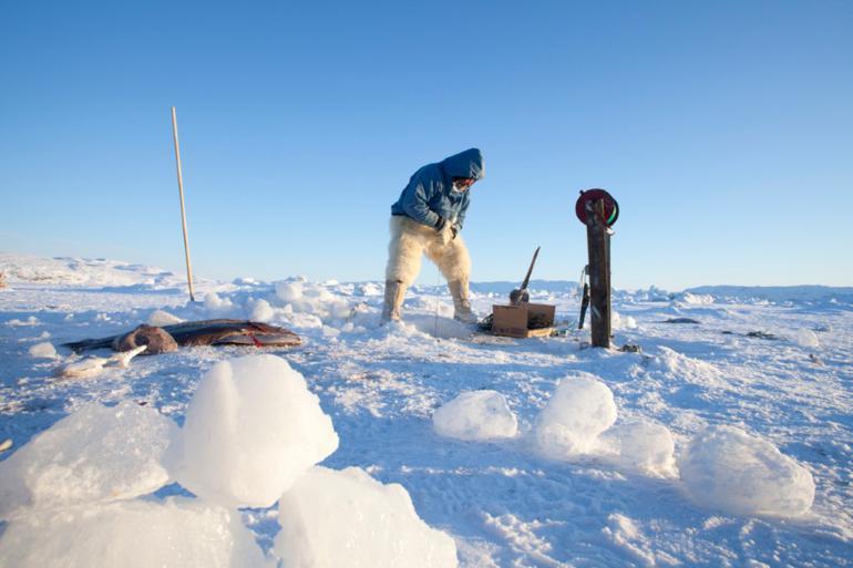Lær af Grønland: Her er distanceledelse hverdag