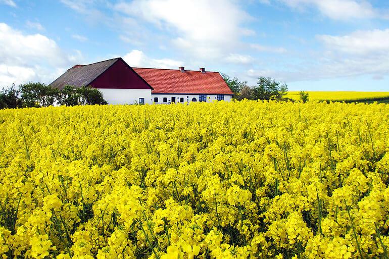 Det skal være nemmere at købe hus på landet