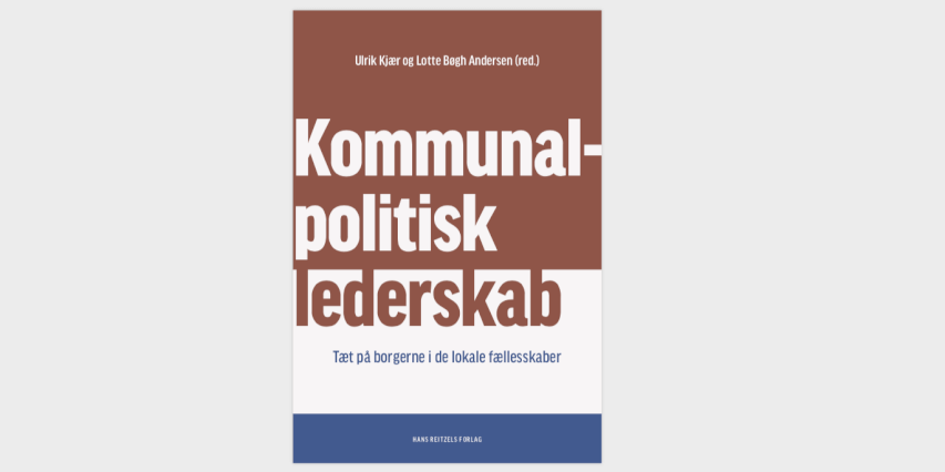 Endelig en bog om politisk lederskab